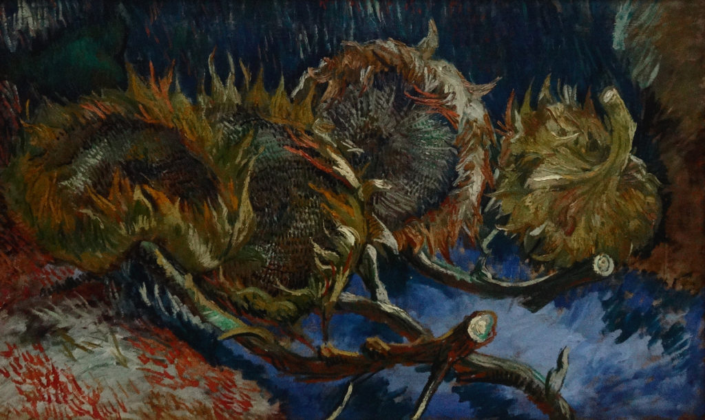 Kroller-Muller Van Gogh 4 Sunflowers Gone to Seed 1887 DSC00892