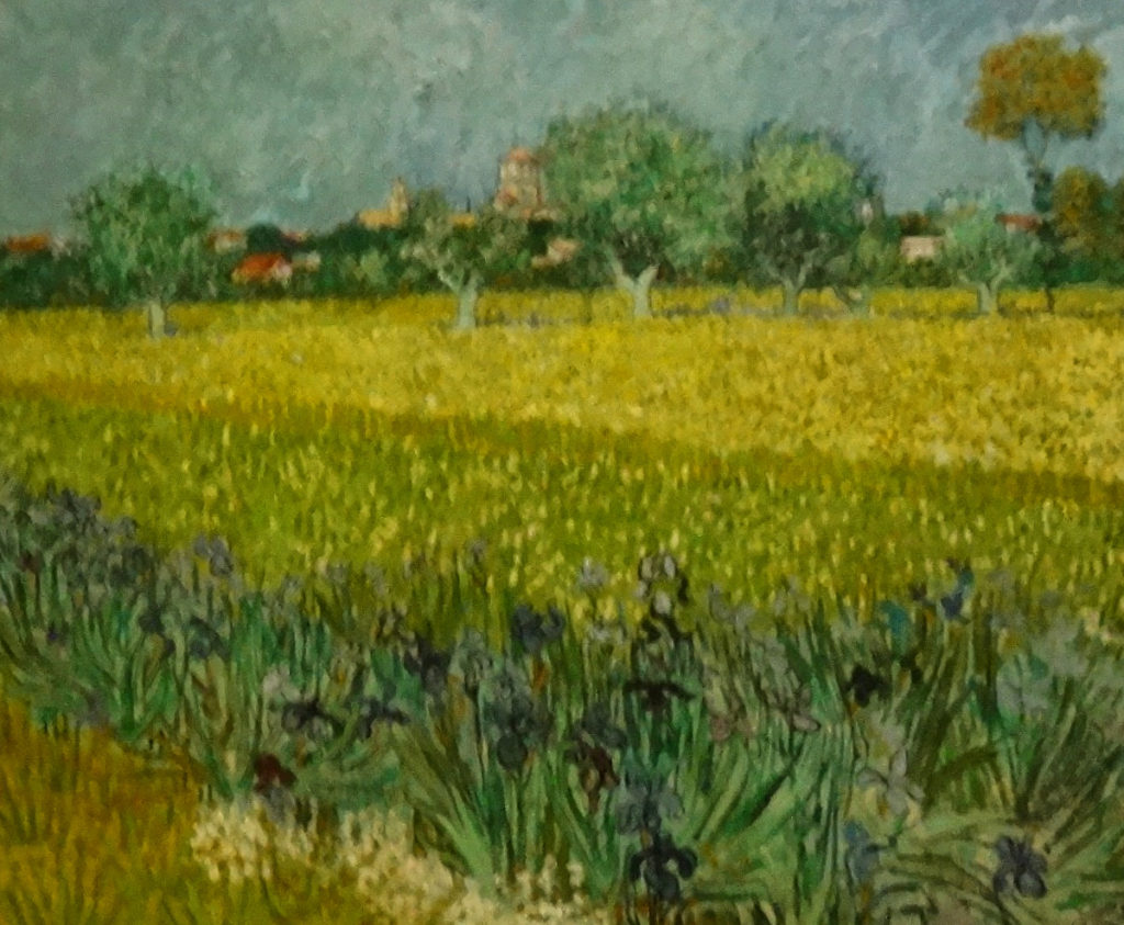 DSC03312 Arles Van Gogh - Field with Trees 1888